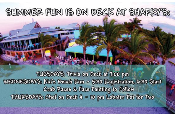 """Sharky's Summer Fun Includes Trivia Night, Kid's Night and """"Chef on Deck"""""""