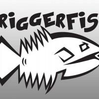 TriggerFish - Happy NYE!