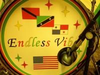 Endless Vibes